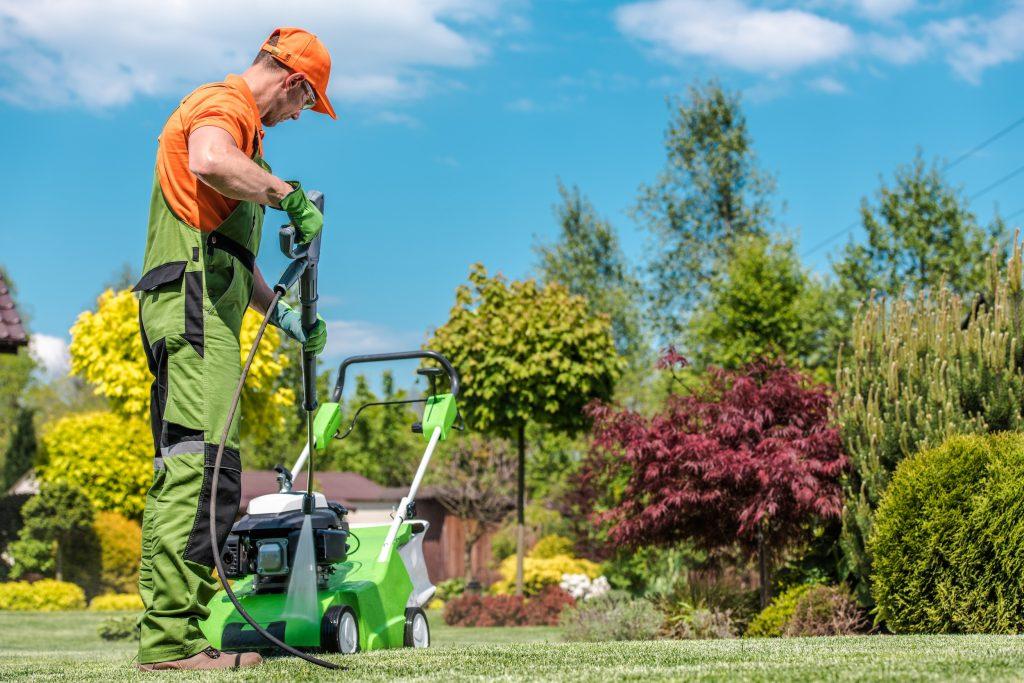 Gardening Equipment Cleaning