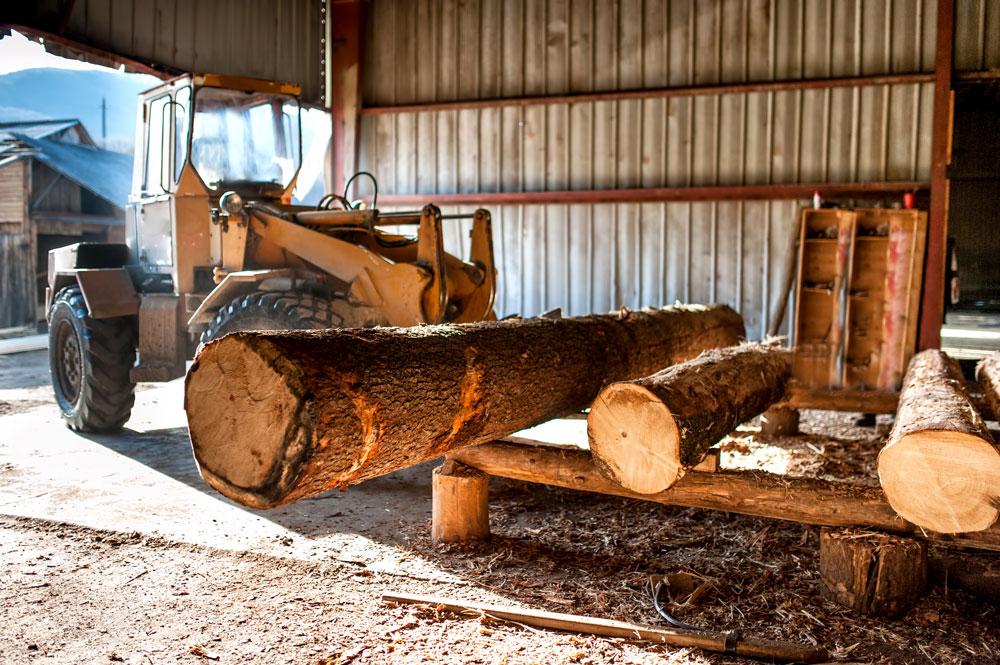 industrial-log-loader-operating-at-industrial-wood-PKV4P38